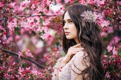 Красивая милая невеста девушки в платье шнурка будуара прозрачном, с украшением на волосах, около цветений дерева с розовыми цвет Стоковая Фотография RF