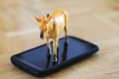 Красивая миниатюрная лошадь, пластичная модель игрушки на экране сотового телефона Стоковая Фотография