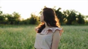 Красивая молодая беспечальная девушка с длинным вьющиеся волосы над предпосылкой ландшафта пшеничного поля цветка Блески солнца з акции видеоматериалы