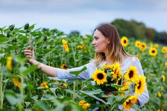 Красивая молодая женщина делая selfie со смартфоном на поле солнцецвета с цветками букета Счастливая девушка на заходе солнца лет стоковая фотография