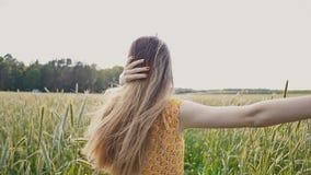 Красивая молодая русская девушка в платье лета с длинными волосами в поле среди высокорослых и зеленых ушей пшеницы 2th confusedl акции видеоматериалы