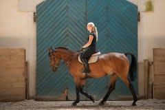 Красивая молодая белокурая женщина ехать лошадь Стоковые Изображения