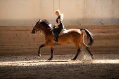 Красивая молодая белокурая женщина ехать лошадь Стоковые Фотографии RF