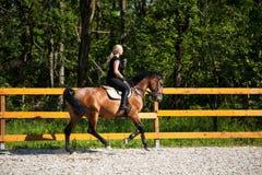 Красивая молодая белокурая женщина ехать лошадь Стоковая Фотография