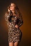 Красивая молодая женщина в платье леопарда Стоковая Фотография