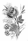 Красивая нарисованная вручную monochrome иллюстрация цветков и трав Стоковые Изображения RF