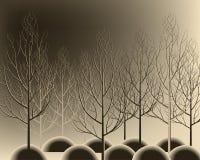 Красивая нарисованная рука разветвляет лес без листьев Славный вал осени Стоковое фото RF