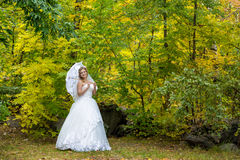 Красивая невеста стоковое изображение rf