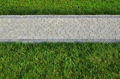 Красивая новая дорожка сделанная вымощая камня расположена среди зеленых gras Стоковые Фото