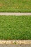 Красивая новая дорожка сделанная вымощая камня расположена среди зеленых gras Стоковое Фото