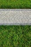 Красивая новая дорожка сделанная вымощая камня расположена среди зеленых gras Стоковое фото RF