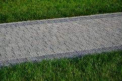 Красивая новая дорожка сделанная вымощая камня расположена среди зеленых gras Стоковая Фотография RF