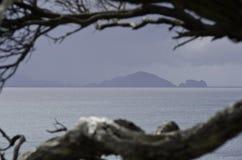 Красивая Новая Зеландия Стоковое фото RF