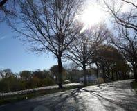 Красивая дорога сельской местности Netherland Стоковое Изображение RF