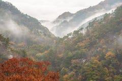 Красивая осень с туманом на горе стоковые фото