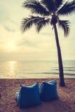Красивая пальма кокоса на пляже и море Стоковое Изображение RF