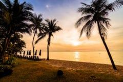 Красивая пальма кокоса на пляже и море Стоковые Фото
