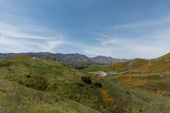 Красивая перспектива superbloom в горной цепи каньона ходока около озера Elsinore стоковые изображения