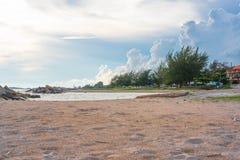 Красивая песчанная дюна с сосновым лесом над морем в лете Стоковая Фотография