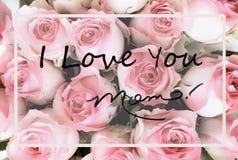 Красивая поздравительная открытка дня матерей пинка и предпосылки белой розы стоковые фотографии rf