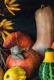 Красивая покрашенная тыква хеллоуин сбора, с большой вползать улитки конец - вверх Стоковое Изображение