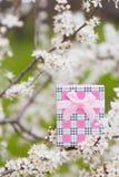 Красивая подарочная коробка окруженная путем цвести ветви весны tr Стоковое Изображение