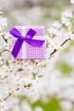 Красивая подарочная коробка окруженная путем цвести ветви весны tr Стоковые Фото