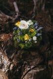Красивая подушка обручального кольца различных цветков белых, голубая, Стоковые Фото