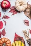 Красивая предпосылка осени с различными красочными тыквой, яблоками и падением выходит на белую предпосылку таблицы, взгляд сверх Стоковые Изображения