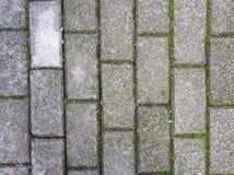 Красивая предпосылка текстуры в дороге деревни 57 стоковые фото