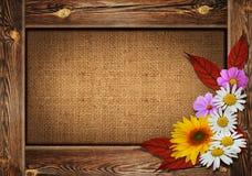 Красивая предпосылка осени с деревянной рамкой и цветки дальше могут Стоковое фото RF