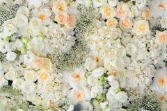 Красивая предпосылка цветков для wedding Стоковое Изображение RF
