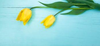 Красивая предпосылка для пасхи, 8-ое марта, дня матерей Стоковые Изображения RF