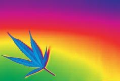 Красивая предпосылка ganja марихуаны радуги Стоковое фото RF