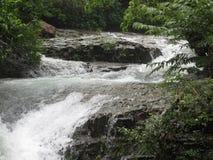 Красивая природа водопада в Индии стоковые фотографии rf