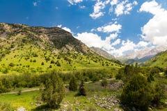 Красивая природа в Гималаях весной Стоковые Изображения RF