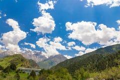 Красивая природа в Гималаях весной Стоковое Изображение