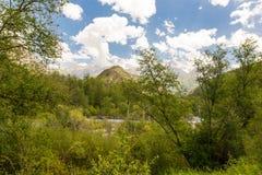 Красивая природа в Гималаях весной Стоковое Изображение RF
