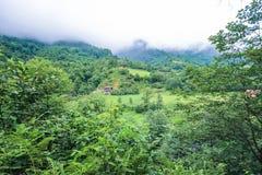 Красивая природа в Georgia в горах на большой возвышенности Стоковая Фотография RF