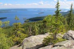 Красивая природа Финляндии, Koli стоковые изображения