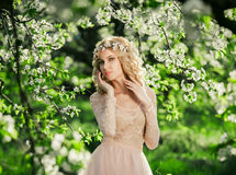 Красивая прогулка весны Стоковое Изображение