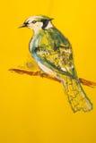 Красивая птица садить на насест на ветви Стоковое фото RF