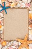 Красивая рамка веревочки и seashells на песке Стоковые Фотографии RF