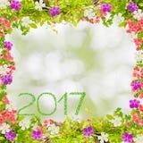 Красивая рамка листьев зеленого цвета при цветок и 2017 год сделанных от Стоковое Фото