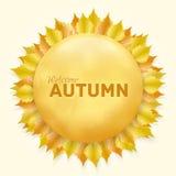 Красивая рамка осени с желтыми листьями Стоковое Изображение RF