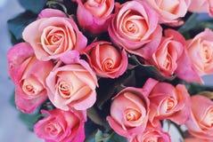 Красивая розовая бледная предпосылка роз Букет роз пинка gorgeouse закрывает вверх на день валентинки или день матери Приветствие Стоковые Изображения RF