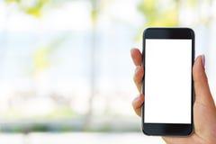 Красивая рука ` s женщины используя умный телефон на пляже Экран белизны Smartphone Пустой пустой экран Стоковое фото RF
