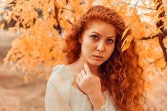 Красивая рыжеволосая молодая женщина в лесе осени стоковые изображения rf