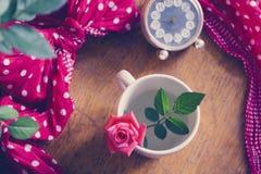 Красивая свежая подняла в чашку Стоковые Изображения RF