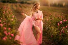 Красивая сексуальная девушка в розовом платье стоя в розах сада стоковые фотографии rf